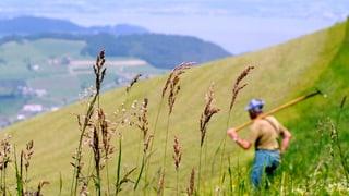 Der Kanton Bern hat plötzlich 10 Prozent mehr Kleinbauern