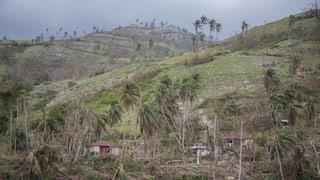 «Unsere Häuser halten einer Katastrophe stand»