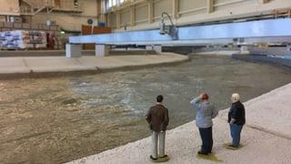 So wird Zürich vor dem Hochwasser geschützt