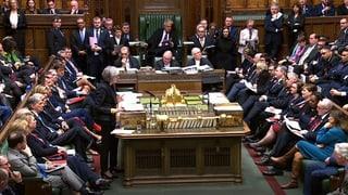 Das sind die Befürworter und Gegner des Brexit