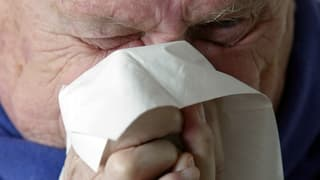 Die Grippe ist zur Epidemie geworden