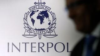 Interpol muss sich auf globale Bedrohungen einstellen