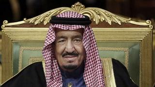 «Saudi-Arabien sieht Schiiten im Land als Gefahr»