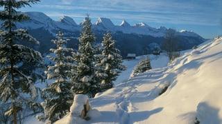Beispiele in der Ostschweiz