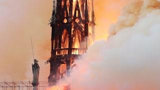 «Schlimmster Verlust eines Weltdenkmals seit Erstem Weltkrieg»