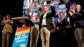 Die AfD lehrt Deutschland das Fürchten