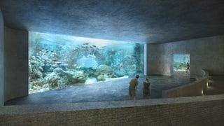 Basler Ozeanium für 100 Millionen