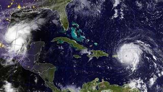 Diesen Kurs könnte Hurrikan «Irma» nehmen