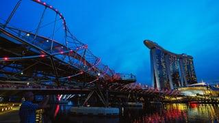 «Die Öffentlichkeit in Singapur ist perplex»
