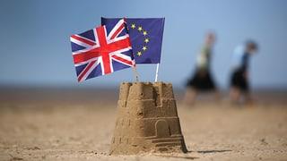 Die Metamorphosen des Brexit