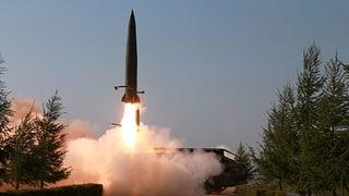 «Die Sanktionen sind in Kraft und tun Nordkorea weh»