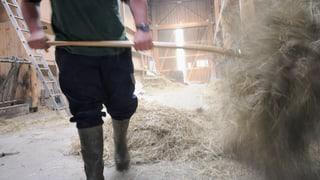 «Immer auf der Überholspur» - Burnout auf dem Bauernhof