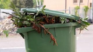 Weniger Biomüll im Kehricht - die Lösung ist einfach