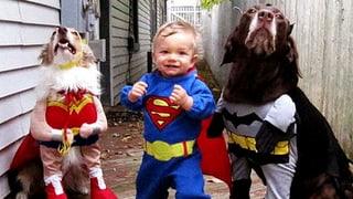 Halloween-Kostüme – nichts für schwache Nerven...