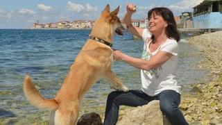 Hund ist Trumpf: So trainiert Monika Fasnacht Vierbeiner