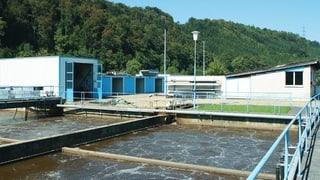Verschmutzte Frenke im Baselbiet: Entwarnung