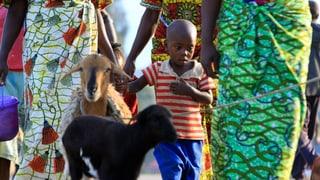 «Schritt in die Moderne»: Afrikas Grenzen sollen fallen