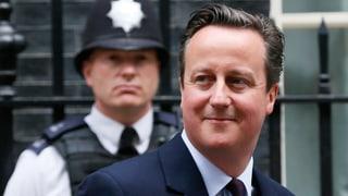 David Cameron geht an die Arbeit