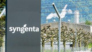 Syngenta: «Die Aktionäre verstehen nun, was wir tun»