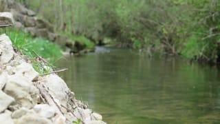 Zu wenig Kies in Berner Flüssen