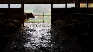 Neue Direktzahlungen fordern die Bauern heraus