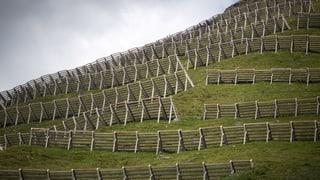St. Antönien: Glisch verda per ovra solara