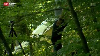 Segelflugzeug im Aargauer Jura abgestürzt - Pilot hatte Glück
