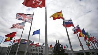 Angst vor US-Kurswechsel scheucht die Nato auf