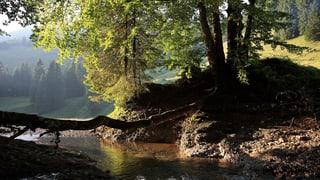 Naturpark Neckertal erhält Geld vom Bund