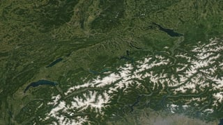 Dank Vegetation kaum Rekordhitze im Flachland