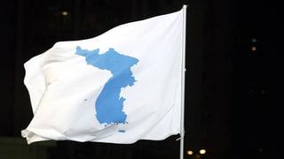 Pjöngjang will Bedenken gegen Wiedervereinigung «zerschmettern»