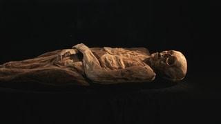 Die Basler Mumie ist identifiziert
