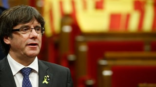 Plant cunter Puigdemont e co.