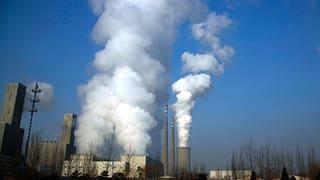 Das Klima wandelt sich – der Mensch nicht