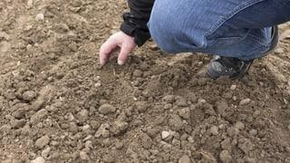 Bundesrat bläst Zentralisierung von Agroscope ab