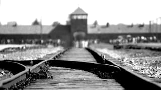 Ein gutes Leben trotz Auschwitz