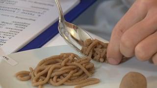 Vermicelles-Degustation: Wo ist der Marroni-Geschmack? (Artikel enthält Video)