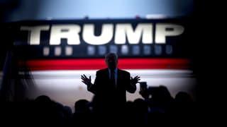 Wenn Weinberger über Trump schreibt, interessiert das nur Europa