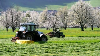 Bundes-Budget 2013: Mehr Geld für Bauern