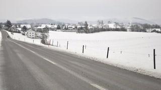 Kiesgrubenprojekt spaltet Freiburger Dorf