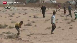 Iraks Armee bricht Widerstand der IS in Amerli
