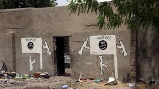 Boko Haram rapina ulteriuras dunnas ed uffants