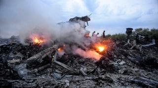 MH17-Absturz: Was das Netz zu wissen glaubt