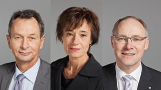 Aargauer Ständeratswahlen: Vier Kandidaten für einen Sitz