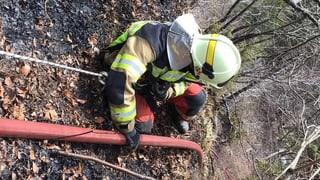 Waldbrand im Solothurner Jura nach über 24 Stunden gelöscht