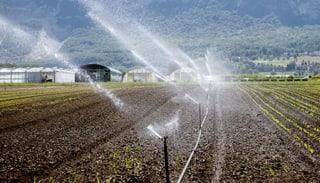 Bauern hoffen auf einen nassen Frühling