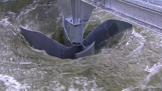 Video «Energiewende: Superturbine für Klein-Wasserkraftwerke (2/5)» abspielen