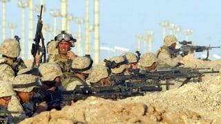 «Kampf gegen IS ist kein Irakkrieg»