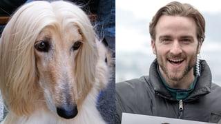 ZweitausendHUND18: Wir sind auf den Hund gekommen (Artikel enthält Bildergalerie)