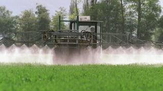 Pestizide im Berner Chrümmlisbach